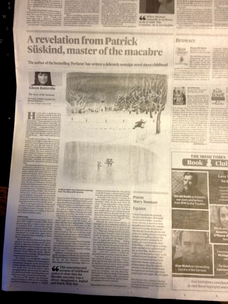 Irish Times Article small1